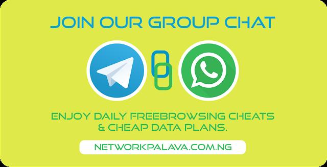 networkpalava telegram whatsapp group chat